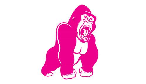 cb_gorilla